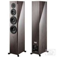 Dynaudio FOCUS 60 XD Walnut high gloss